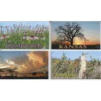 kansas_scene_magnets_set_of_4_margaret_dwyer